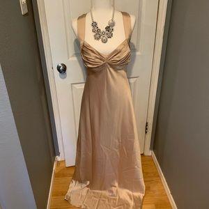 CK champagne  floor length dress
